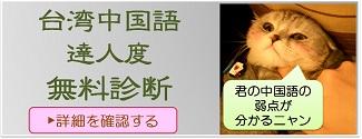 台湾中国語達人診断